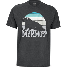 Marmot Dawning SS T-shirt Herrer, grå